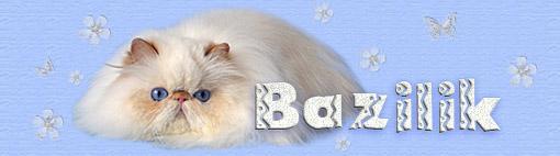 BAZILIK CATTERY style=